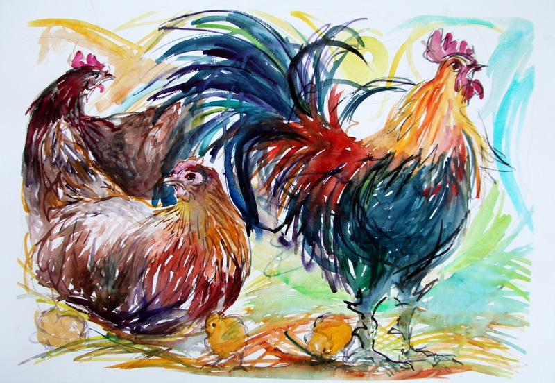Cock and Hens Sketch