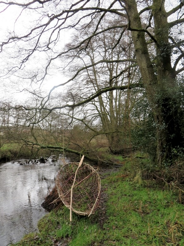 Willow Coracle